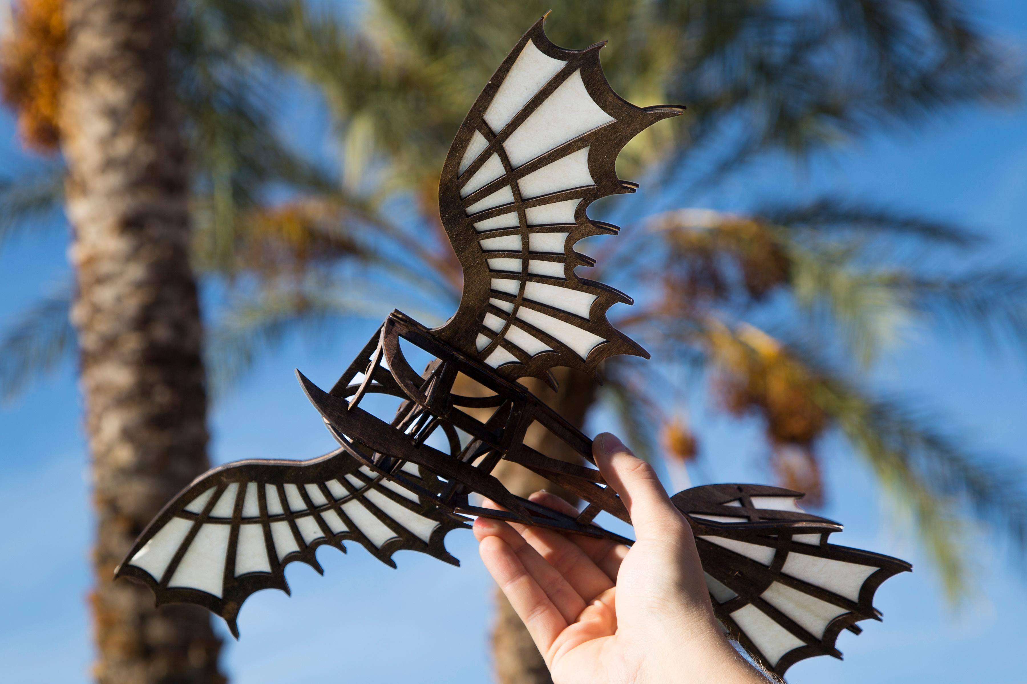Da Vinci Flying Machine FSL Project Header.jpg